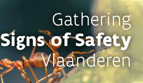 Gathering Signs of Safety
